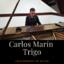 Carlos Marín Trigo